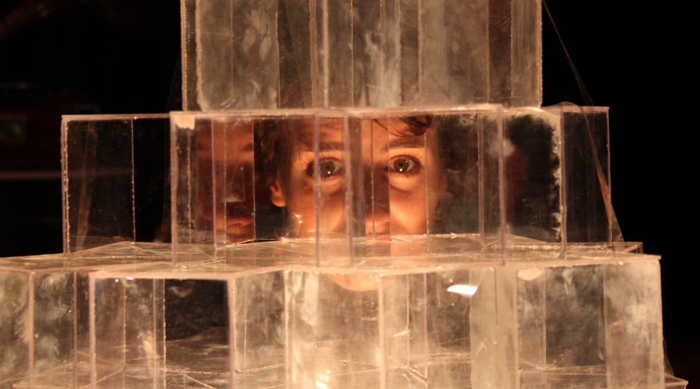 Lo zoo di vetro